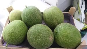 eerstemeloenen