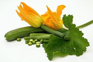 zucchini-572542_1920